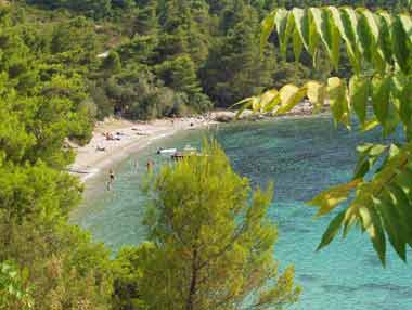 Peljesac - Private Accommodation - Croatia